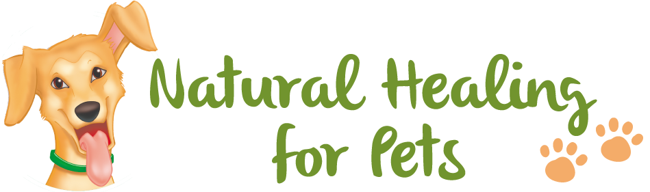 Natural Healing for Pets